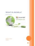 hệ quản trị nội dụng mã nguồn mở JOOMLA