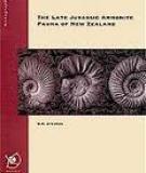 THE LATE JURASSICAMMONITE FAUNA OF NEW ZEALAND_2
