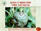 Quản lý bệnh nấm cây họ cà  ( Nguyễn Văn Thiệu)