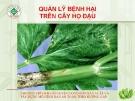 Quản lý bệnh hại cây họ đậu  ( Nguyễn Văn Thiệu)