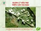 Quản lý sâu hại cây họ đậu  ( Nguyễn Văn Thiệu)