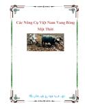 Các Nông Cụ Việt Nam Vang Bóng Một Thời