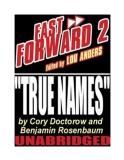The True Names