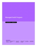 Managed Audit Program