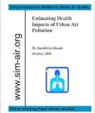 Review Air pollution and health