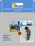 Comprehensive Audit Analysis for Parks and Recreation
