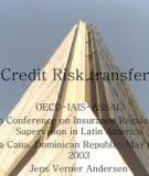 Innovations in Credit Risk Transfer: Implications for Financial Stability