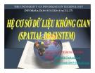 Spatial DB System