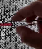 2013 Threats Predictions: MCAFEE