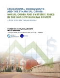 Educational EndowmEnts   and thE Financial crisis:  social costs and systEmic risks  in thE shadow Banking systEm