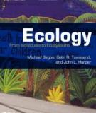 ECOLOGY From Individuals to Ecosystems