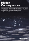 Hidden Consequences: The costs of industrial water pollution  on people, planet and profit