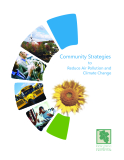 Community Strategies  to Reduce Air Pollution and  Climate Change