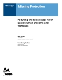 Missing Protection: Polluting the Mississippi River  Basin's Small Streams and  Wetlands