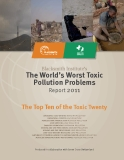 Blacksmith Institute's The World's Worst Toxic Pollution Problems