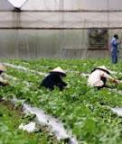 Nông dân ứng dụng công nghệ sinh học