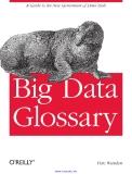 Big Data Glossary
