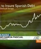 Spain: The Reform of Spanish Savings Banks Technical Notes