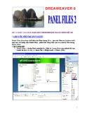 DREAWEAVER 8 - Panel files 2