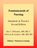 FUNDAMENTALS OF NURSING STANDARDS & PRACTICE SECOND EDITION