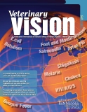 Veterinary vision Volume 6