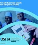 SMALL BUSINESS GUIDE FOR ETHYLENE OXIDE