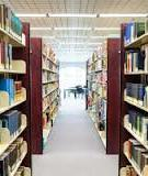 Libraries, patrons, and e-books