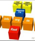 Internet Domain Names: Background and Policy Issues