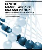 GENETIC MANIPULATION OF DNA AND PROTEIN – EXAMPLES FROM CURRENT RESEARCH
