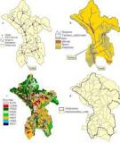 Assessment of diffuse water pollution load from an  urban catchment in India