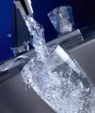 Drinking Water Contamination and Its Effects on Human Health