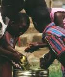 Domestic Water Pollution among Local Communities in  Nigeria ----Causes and Consequences