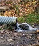Roofing Materials' Contributions to Storm-Water Runoff Pollution