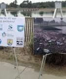 Modular Wetlands Impact on Water Quality in Oceanside Harbor