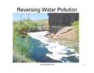 Reversing Water Pollution