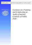 Guidance for Planning  and Conducting an  Audit of Internal  Controls of Public  Debt