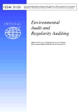 Environmental  Audit and  Regularity Auditing