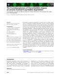 Báo cáo khoa học: The 3-ureidopropionase of Caenorhabditis elegans, an enzyme involved in pyrimidine degradation