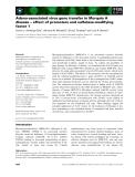 Báo cáo khoa học: Adeno-associated virus gene transfer in Morquio A disease – effect of promoters and sulfatase-modifying factor 1