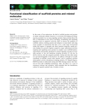 Báo cáo khoa học: Functional classification of scaffold proteins and related molecules