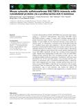 Báo cáo khoa học: Mouse cytosolic sulfotransferase SULT2B1b interacts with cytoskeletal proteins via a proline⁄serine-rich C-terminus