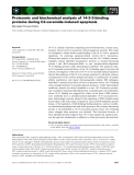 Báo cáo khoa học: Proteomic and biochemical analysis of 14-3-3-binding proteins during C2-ceramide-induced apoptosis