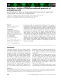 Báo cáo khoa học: Interferon-c bolsters CD95/Fas-mediated apoptosis of astroglioma cells