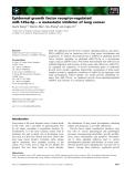 Báo cáo khoa học: Epidermal growth factor receptor-regulated miR-125a-5p – a metastatic inhibitor of lung cancer