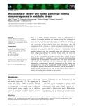 Báo cáo khoa học: Mechanisms of obesity and related pathology: linking immune responses to metabolic stress