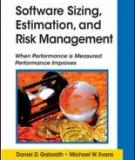 Project risk management: lessons learned from software development environment