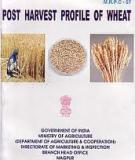 Post Harvest Profile of Wheat