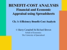 Efficiency Benefit-Cost Analysis