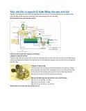 Máy nén khí và nguyên lý hoạt động của máy nén khí