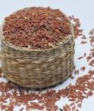 Ngày tết uống nước gạo lứt rang rất tốt cho hệ tiêu hóa